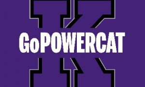 gopowercat