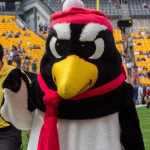 Youngstown State Penguins mascot